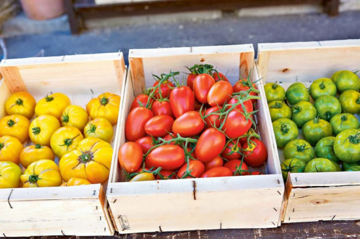как сохранить томаты до Нового Года
